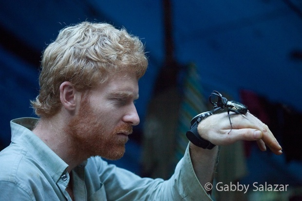Tim stares down a rhinoceros beetle.