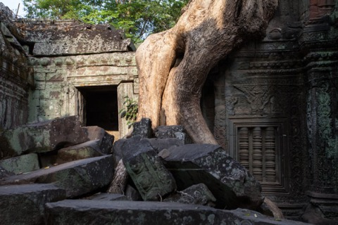 The temple of Ta Prohm near dawn.