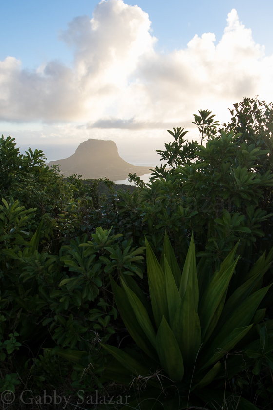 Sunset as seen from the Summit of Pinto du Canot Mountain in Mauritius.