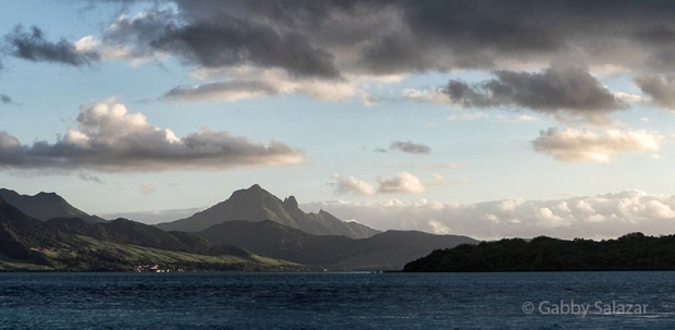 A view of Ile aux Aigrettes with Lion Mountain in the background.