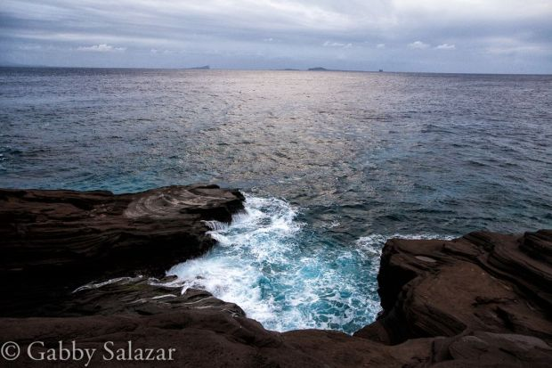 The rugged coastline of Round Island, a volcanic island made of basalt.